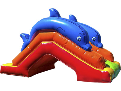 Acuatic inflatable slide dolphin image